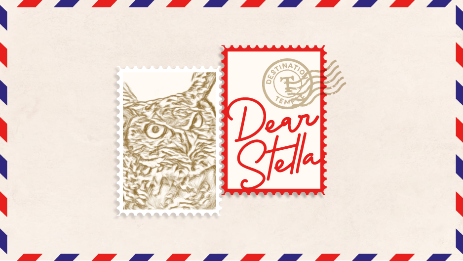 An illustration of two postage stamps, one with Stella the Owl and one that reads Dear Stella.