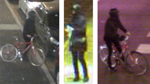 surveillance images of a person of interest