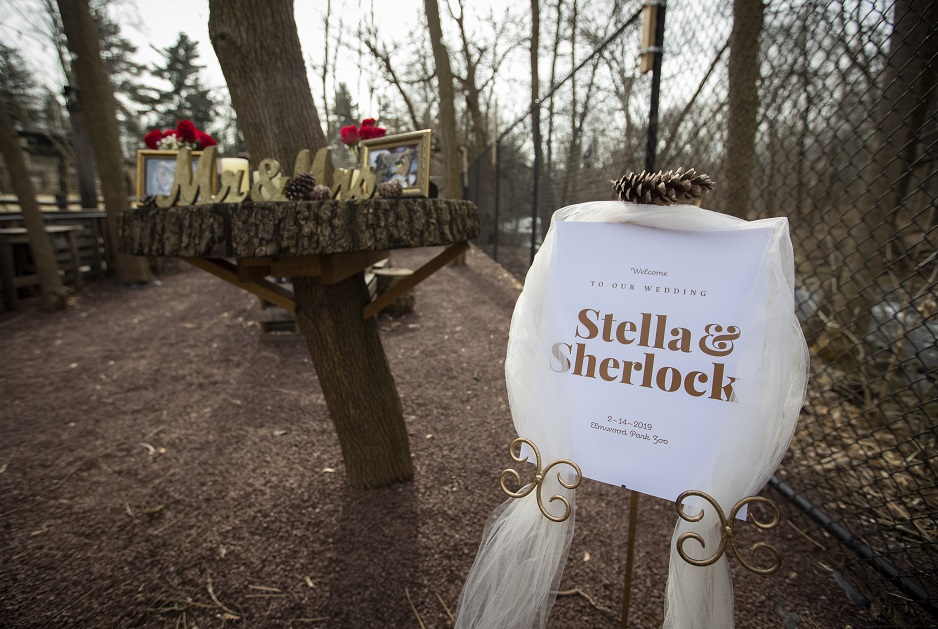 A sign welcoming all to Stella and Sherlock's wedding at the Elmwood Park Zoo.