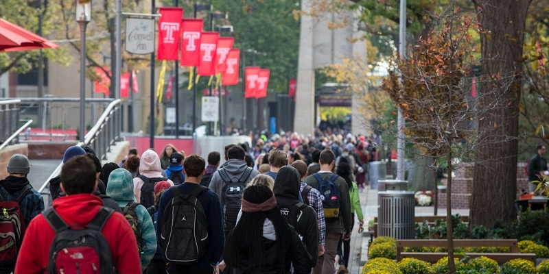 students walking on campus underneath red flags bearing the Temple 'T'.