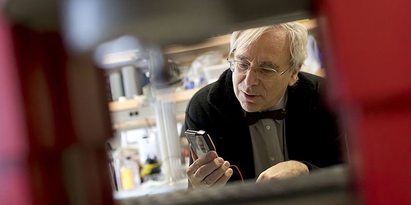 Peter Lelkes looking at a device in the lab.