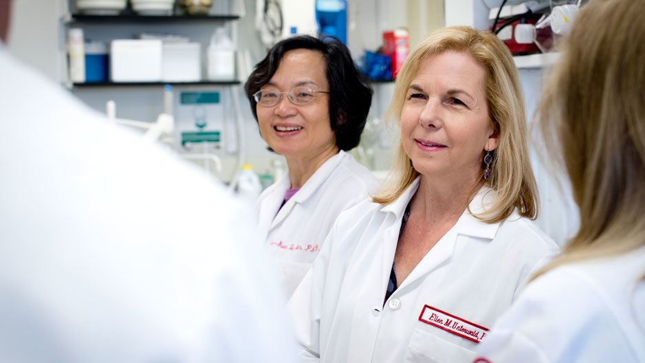 Temple University Lewis Katz School of Medicine researchers helped develop a tool that gives deeper insights into the brain's response to opioids.