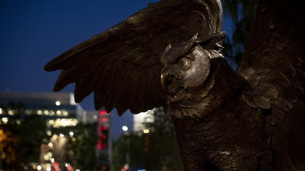The Owl statue on Main Campus.