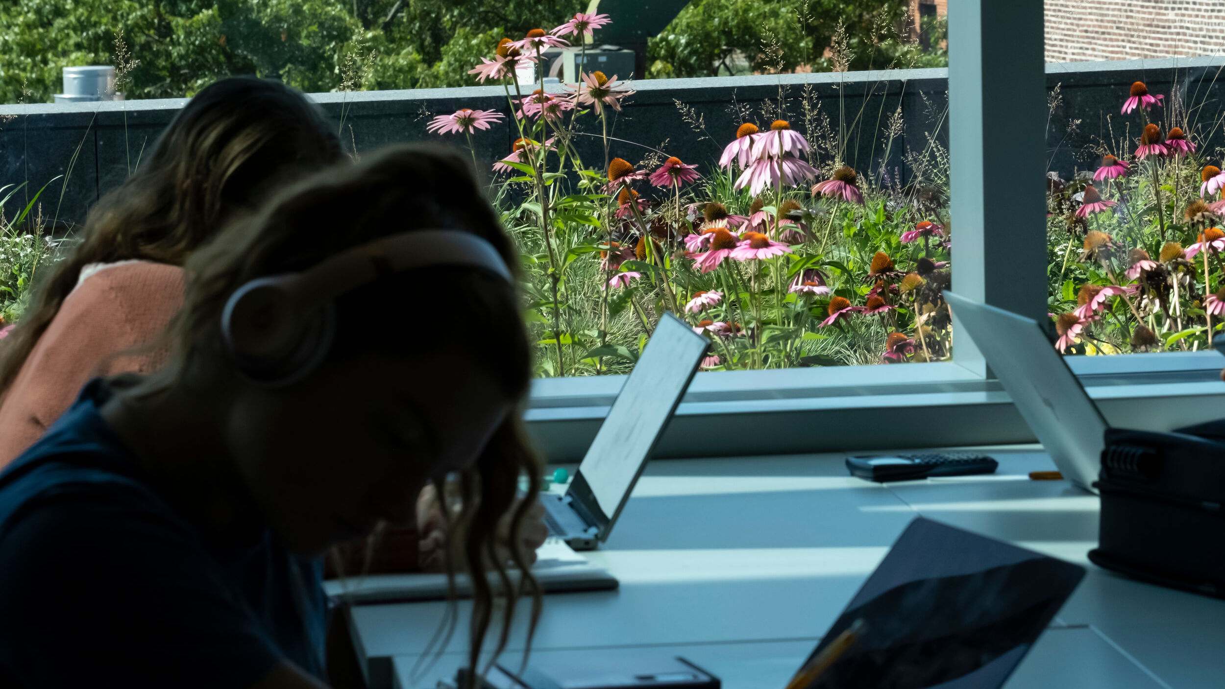 Students studying in Charles Library, with the green roof visible through a window nearby.