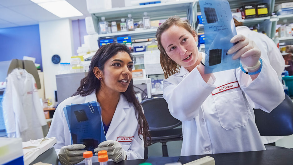 two students examining a document in Temple's Cardiovascular Research Center.