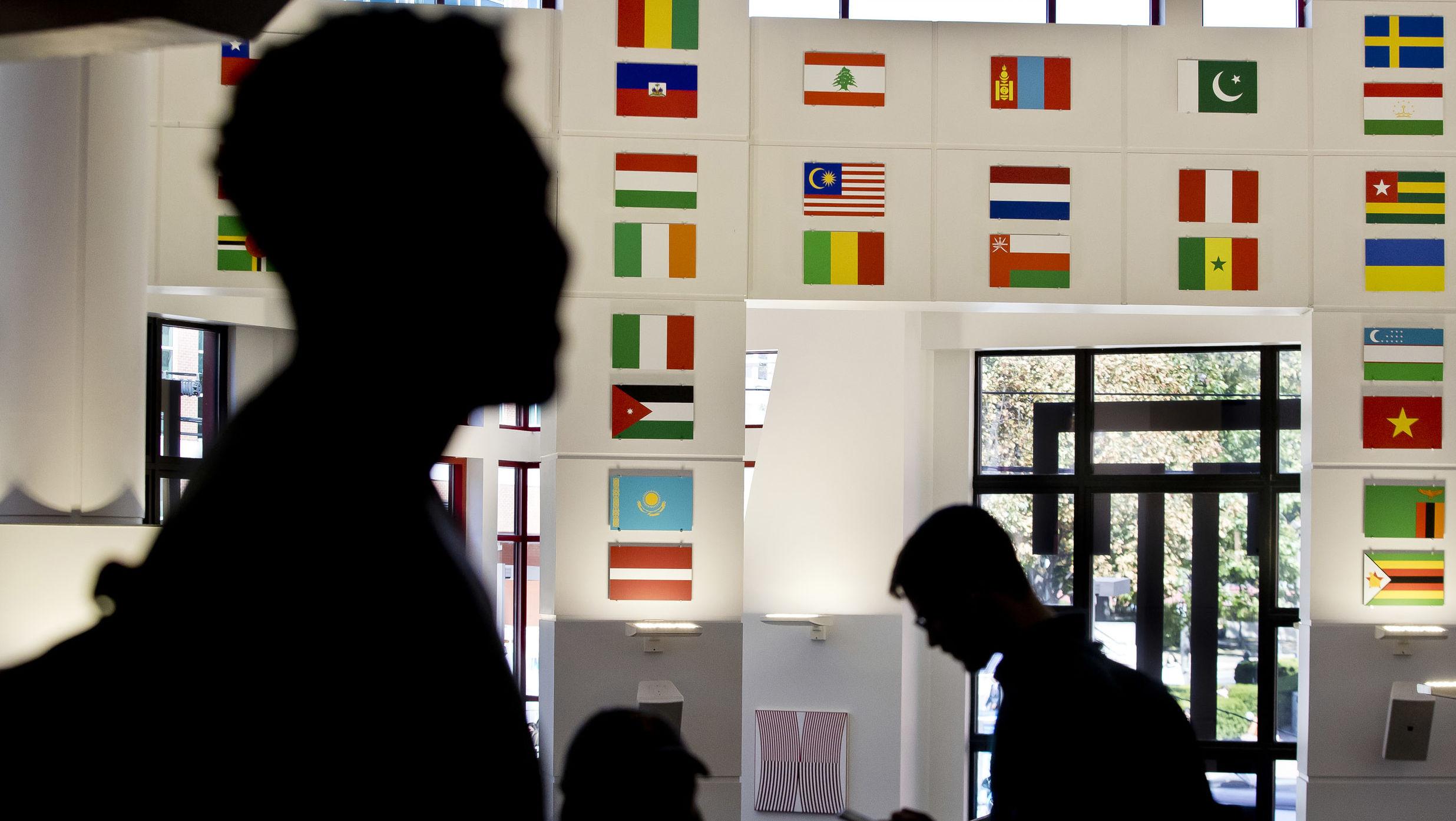 Intenational flags hang in the Howard Gittis Student Center