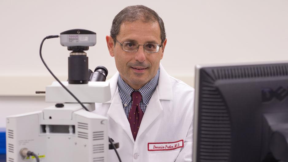 Dr. Domenico Pratico