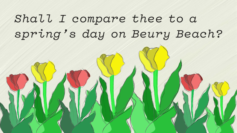"""Text over yellow and red painted flowers reads, """"Shall I compare thee to a spring's day on Beury Beach?"""""""