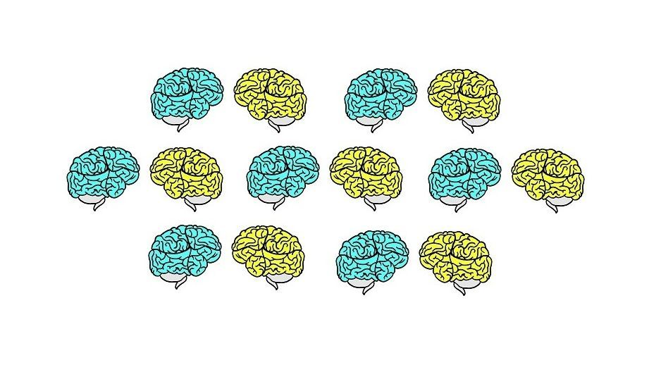 drawing of brains in blue and yellow colors