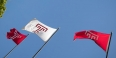 Temple University logo flags flying