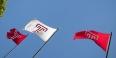 Temple University logo flags flying