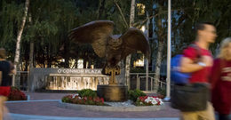 New owl statue at O'Connor Plaza