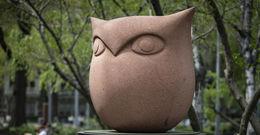 The alumni owl on Main Campus.