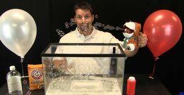 Science video demonstration