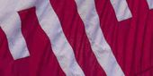 flag adorned with Temple T
