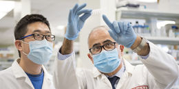 Two doctors looking at results in a lab.